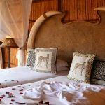 Mkuze Falls Game Lodge