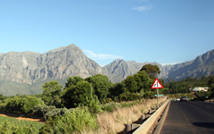 Driving in through the beautiful winelands of South Africa