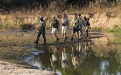 Walking Safaris in Southern and East Africa