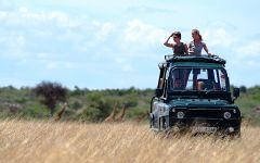 Your Kenyan Safari Experience