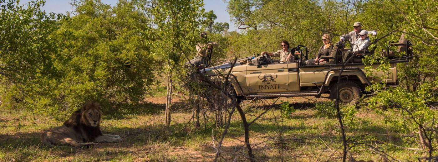 How Safe are Safaris?