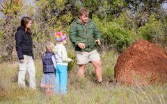 ITINERARY-5: A Family Holiday in South Africa