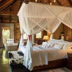 Camp Jabulani: Stay 3 nights for the price of 2