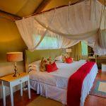 Thornybush Game Reserve: Stay 3 nights for the price of 2