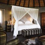 Motswari Game Lodge