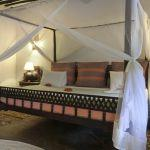 Kinondo Kwetu: Honeymoon Offer