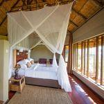 Ngoma Safari Lodge: Stay 3 nights for the price of 2