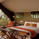 Lemala Ndutu Camp: Stay 3 nights for the price of 2