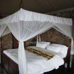Mbalageti Safari Lodge