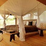 Serengeti Bushtops: Stay 4 nights for the price of 3