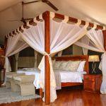 Zambezi Sands River Camp: Stay 4 nights for the price of 2