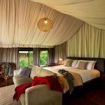 Lemala Ngorongoro Tented Camp: Stay 3 nights for the price of 2