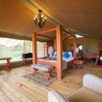 Asanja Grumeti Camp: Stay 4 nights for the price of 3