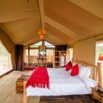Asanja Moru Camp: Stay 4 nights for the price of 3
