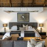 Shamwari Game Reserve: Stay 4 nights for the price of 3