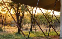 Serian's Serengeti North Camp